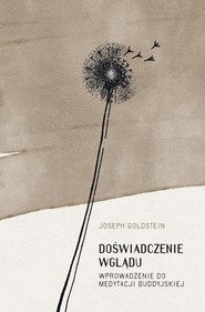 okładka Doświadczenie wglądu, Książka | Joseph Goldstein