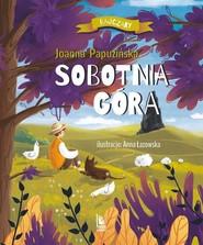 okładka Sobotnia góra, Książka | Joanna Papuzińska