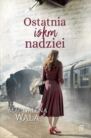 okładka Ostatnia iskra nadziei Wielkie Litery, Książka   Magdalena Wala