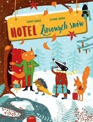 okładka Hotel zimowych snów, Książka | Thomas Kruger, Eleanor Sommer