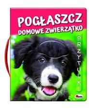 okładka Pogłaszcz domowe zwierzątko, Książka | Kawałko-Dzikowska Natalia
