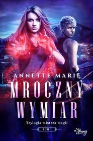 okładka Trylogia mistrza magii Tom 1 Mroczny wymiar, Książka | Marie Annette