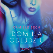 okładka Dom na odludziu - opowiadanie erotyczne, Audiobook | Bech Camille