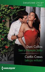 okładka Sen o Nowym Jorku, Książka | Dani Collins