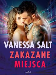 okładka Zakazane miejsca - pięć gorących opowiadań erotycznych, Ebook   Salt Vanessa
