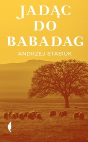 okładka Jadąc do Babadag, Książka | Andrzej Stasiuk