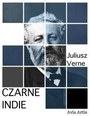 okładka Czarne Indie, Ebook | Juliusz Verne