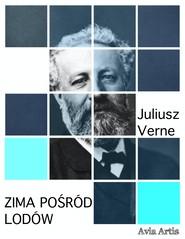 okładka Zima pośród lodów, Ebook | Juliusz Verne