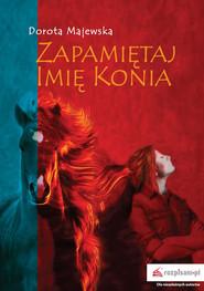 okładka Zapamiętaj imię konia, Książka | Dorota Majewska