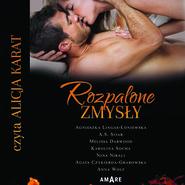 okładka Rozpalone zmysły, Audiobook | Agnieszka Lingas-Łoniewska