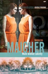 okładka Małe wielkie sekrety Osiedle pogodne, Książka | Magdalena Majcher