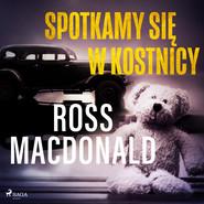 okładka Spotkamy się w kostnicy, Audiobook | Ross Macdonald