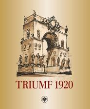 okładka Triumf 1920. Obraz i pamięć, Książka |
