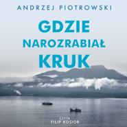 okładka Gdzie narozrabiał kruk, Audiobook | Andrzej  Piotrowski