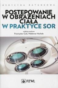 okładka Postępowanie w obrażeniach ciała w praktyce SOR, Ebook | Leszek  Brongel, Andrzej  Basiński, Jarosław  Berent