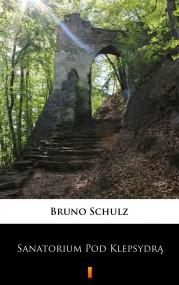 okładka Sanatorium Pod Klepsydrą. Ebook | EPUB,MOBI | Bruno Schulz