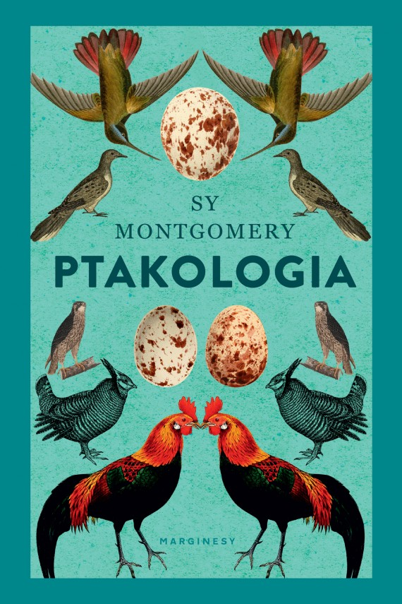 okładka Ptakologia. Ebook | EPUB, MOBI | Sy Montgomery, Adam Pluszka, Joanna Kułakowska-Lis