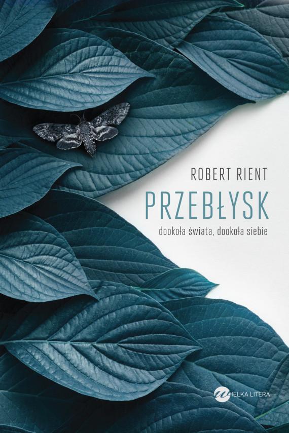 okładka Przebłyskebook | EPUB, MOBI | Robert  Rient