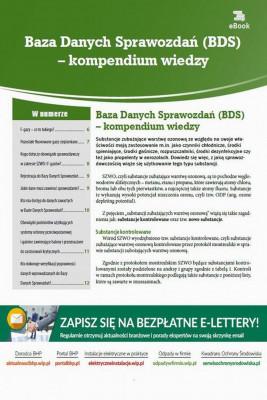 okładka Baza Danych Sprawozdań (BDS) – kompendium wiedzy, Ebook | Natalia  Springer
