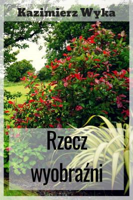 okładka Rzecz wyobraźni, Ebook | Kazimierz Wyka