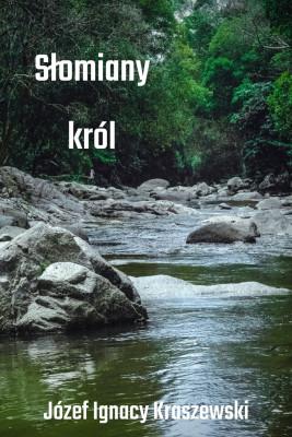 okładka Słomiany król, Ebook | Józef Ignacy Kraszewski