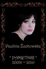 okładka Pamiętniki 2005-2011, Ebook | Paulina Żuchowska