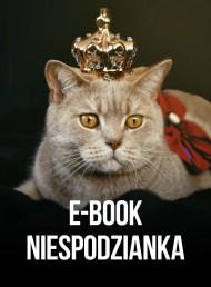 okładka Ebook niespodzianka, Ebook | Kot z worka