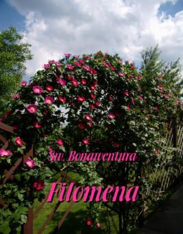 okładka Filomena, Ebook   Święty Bonawentura