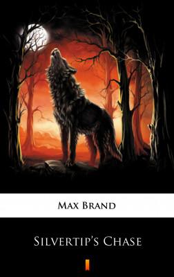 okładka Silvertip's Chase, Ebook | Max Brand