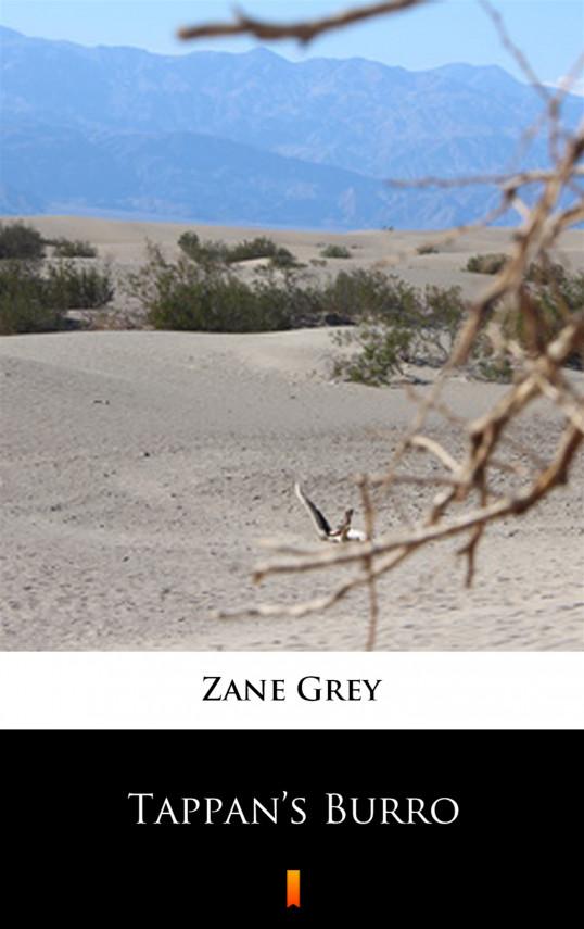 okładka Tappan's Burroebook   EPUB, MOBI   Zane Grey