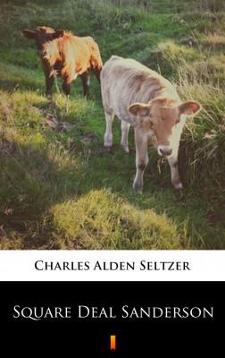 okładka Square Deal Sanderson, Ebook | Charles Alden Seltzer