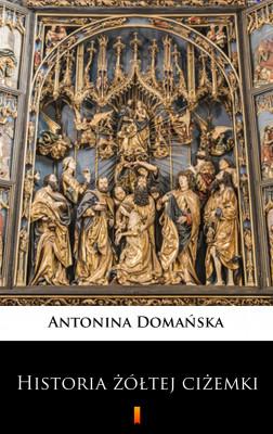 okładka Historia żółtej ciżemki, Ebook   Antonina Domańska