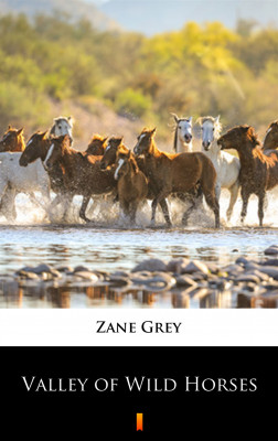 okładka Valley of Wild Horses, Ebook   Zane Grey