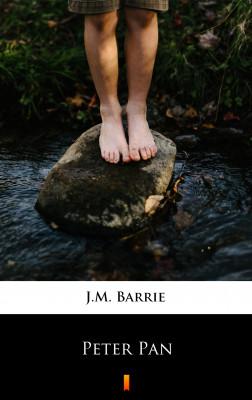 okładka Peter Pan, Ebook   J.M. Barrie