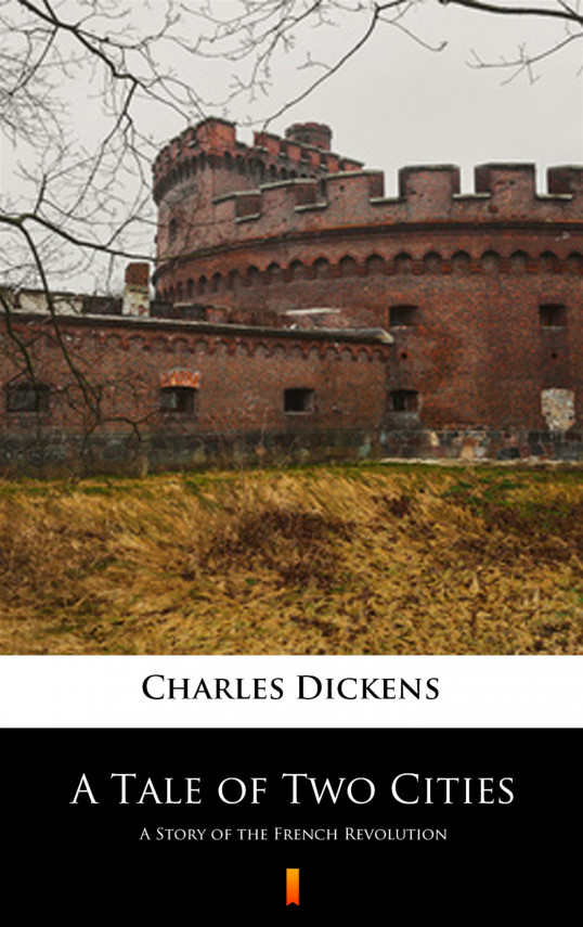 okładka A Tale of Two Cities. A Story of the French Revolutionebook | EPUB, MOBI | Charles Dickens