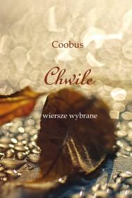 okładka Chwile, Ebook | TK Coobus