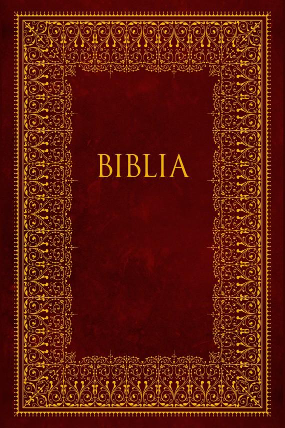 okładka Biblia. Pismo Święte Starego i Nowego Testamentuebook | EPUB, MOBI | autor zbiorowy