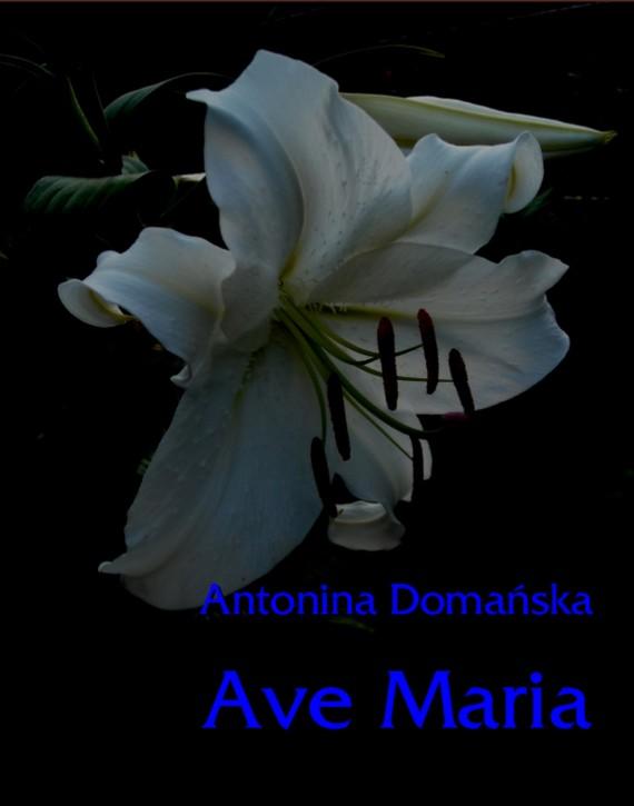 okładka Ave Maria. Ebook | EPUB, MOBI | Antonina Domańska