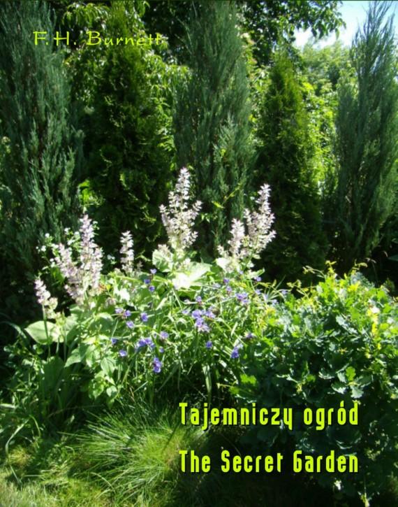 okładka Tajemniczy ogród. The Secret Gardenebook | EPUB, MOBI | Frances Hodgson Burnett