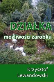 okładka Działka. Możliwości zarobku. Ebook | EPUB,MOBI | Krzysztof Lewandowski