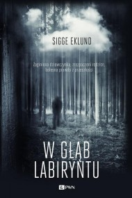 okładka W głąb labiryntu, Ebook | Sigge  Eklund