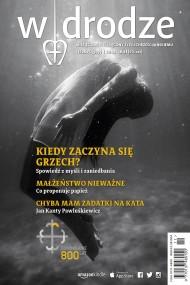 okładka Miesięcznik W drodze nr 11/2015. Ebook | EPUB,MOBI | autor zbiorowy