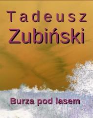 okładka Burza pod lasem. Ebook | EPUB,MOBI | Tadeusz Zubiński