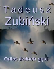okładka Odlot dzikich gęsi. Ebook | EPUB,MOBI | Tadeusz Zubiński