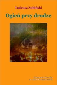 okładka Ogień przy drodze. Ebook | EPUB,MOBI | Tadeusz Zubiński