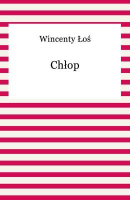 okładka Chłop, Ebook | Wincenty Łoś
