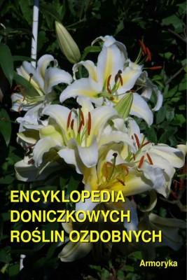 okładka Encyklopedia doniczkowych roślin ozdobnych, Ebook | Andrzej  Sarwa
